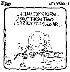 Ziggy and Furbies